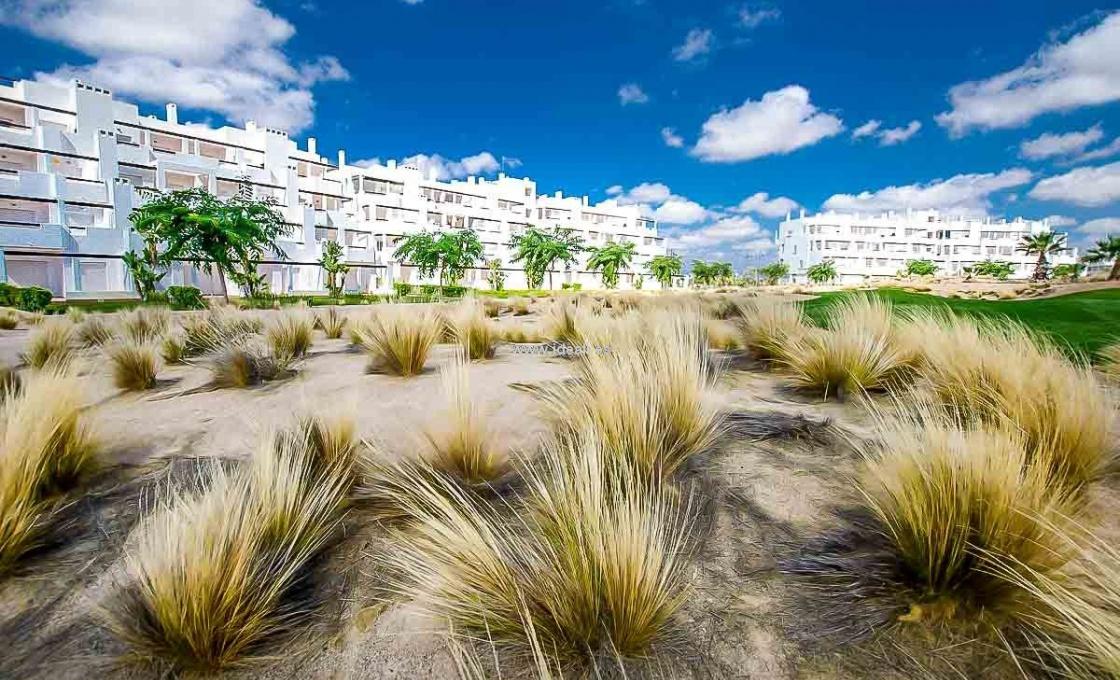 30700 Torre pacheco,Espagne,2 Chambres à coucher Chambres à coucher,1 la Salle de bainSalle de bain,Appartement,1223